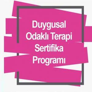 Duygu Odaklı Terapi Eğitimi Sertifika Programı